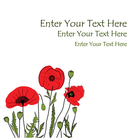 Hand-drawn background featuring blooming Poppies