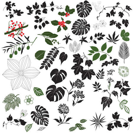 twigs: Black and White Floral Design Elements