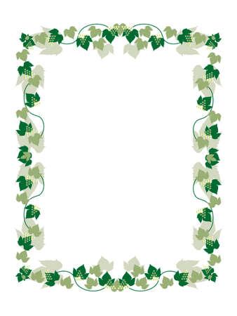 grapevine frame Stock Vector - 5458764