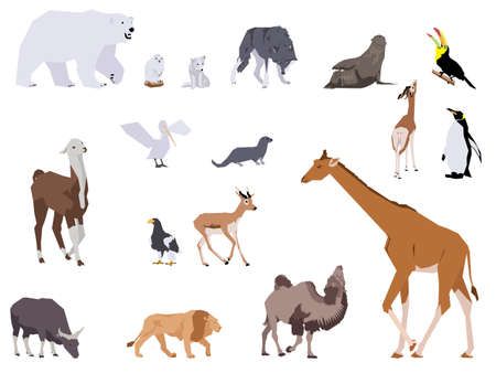 set of wild animals, collage style drawing Vector
