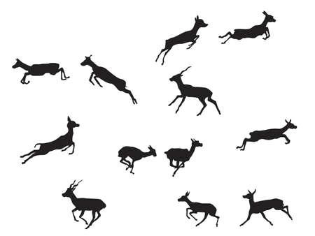 blackbuck antelope in  jumping gait Vector