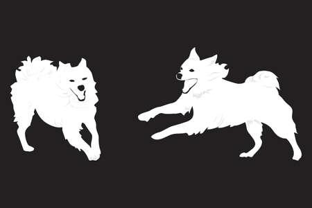 salto largo: dos perros felices en ejecuci�n