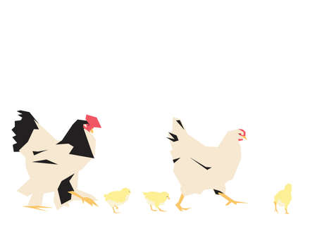 chicken family: chicken family walking, collage style drawing Illustration