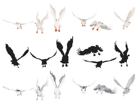 flying geese collection,  different color versions Vector