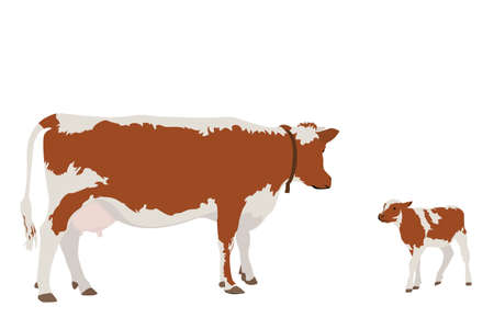cow and her calf Stock Vector - 6416394