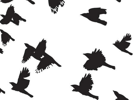 aloft: flying crows background