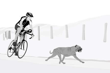 gait: bike ride with the dog