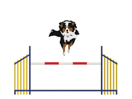 dog run: Every Obstacle Is An Opportunity
