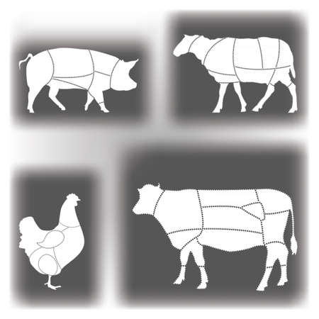 Meat diagrams Stock Vector - 10569603