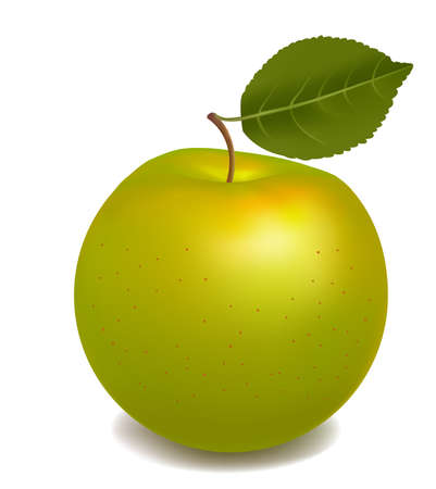 green apple isolated: Fresh green apple isolated on white. Photo-realistic