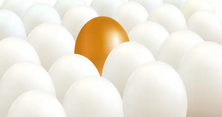 A golden egg between white eggs. Unique and different concept.  Vector