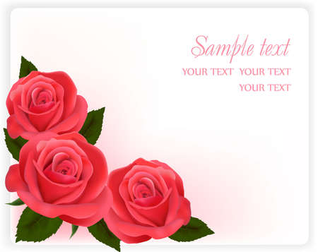 Background with pink roses.  Stock Vector - 9934479