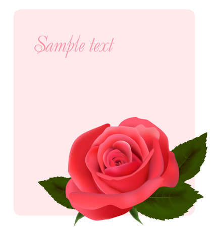 Card with beautiful pink rose, vector illustration Vector