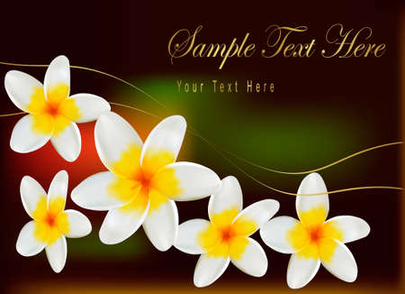 bali: Background with frangipani flowers. Vector illustration.