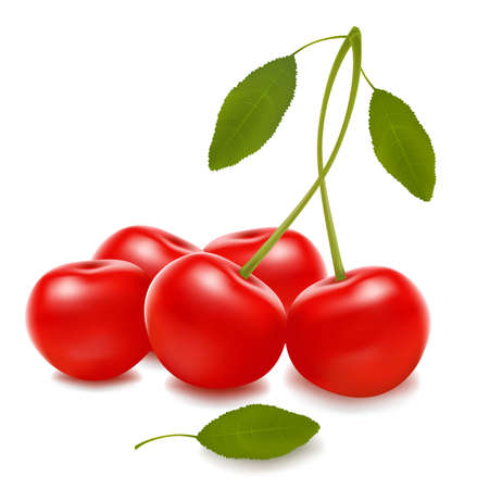 sweet and sour: Group with red cherries. Vector Illustration