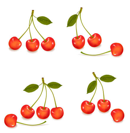 mellow: Group with cherries with leaf isolated on a white background. Vector.