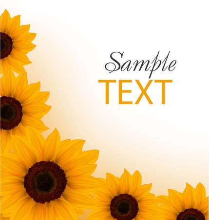 Beautiful yellow Sunflower background. Vector. Vector