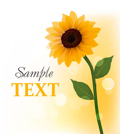 Beautiful yellow sunflower. Vector.
