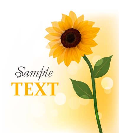 Beautiful yellow sunflower. Vector.