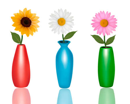 gerber: Flowers in vases isolated on white background. Vector.