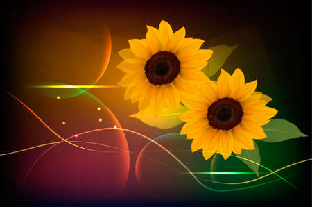Beautiful yellow Sunflower background. Vector. Vector