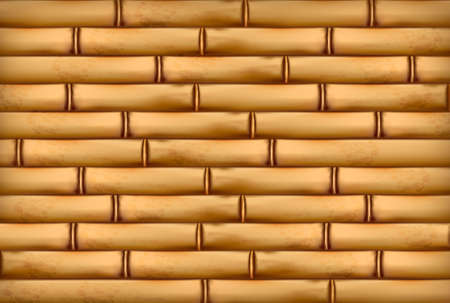 bark: Bamboo background. illustration.