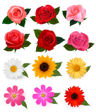 set:  Big set of beautiful colorful flowers. Vector illustration.