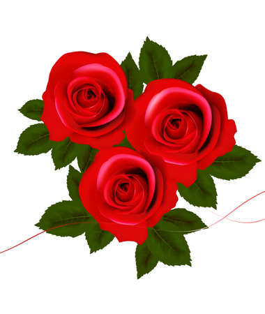 Background with red roses. Vector illustration. Vector