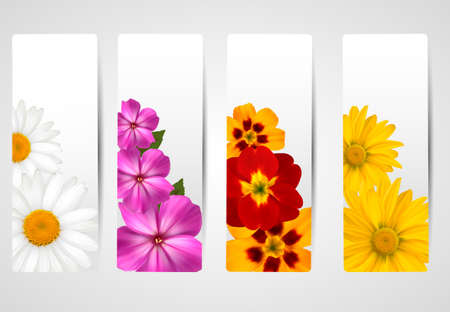 Set of banners with different colorful flower  Vector illustration  Vector
