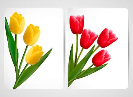 red and yellow card: Juego de banderas con la ilustraci�n vectorial colorido de flores Vectores