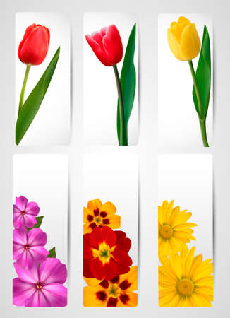 margerite:  Big set of banners with spring and summer flowers