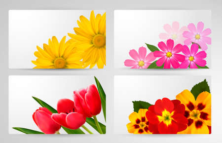 Set of banners with different colorful flower. Vector illustration. Stock Vector - 17758132