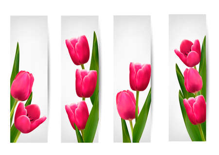 Set of banners with pink flower.Vector Vector