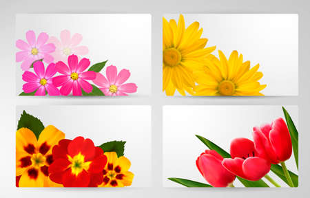 gerber: Set of banners with different colorful flower. Vector illustration. Illustration