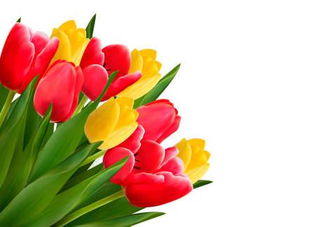 Bouquet with red and yellow flowers in white background. Vector
