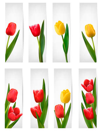 tulipe rouge: Ensemble de banni�res avec fleur rose.