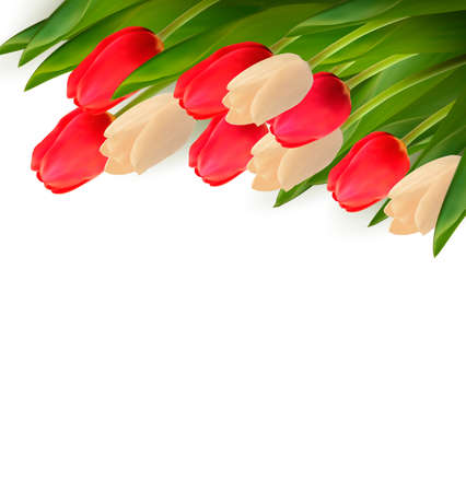 Holiday background with colorful flowers. Vector illustration. Vector