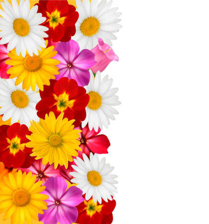 beautiful flower: Flower border. Vector.