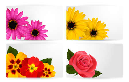gerber: Set of gift cards with different colorful flower.  Illustration