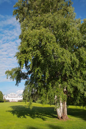 and st petersburg: Elagin Palace in park on Elagin Island in St. Petersburg