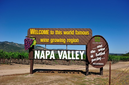 napa valley: Napa Valley View