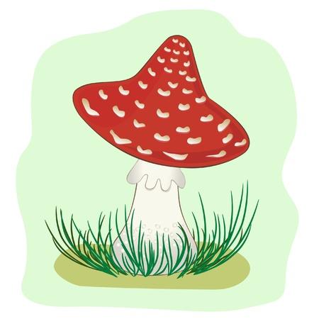 Illustration of Mushroom amanita Vector