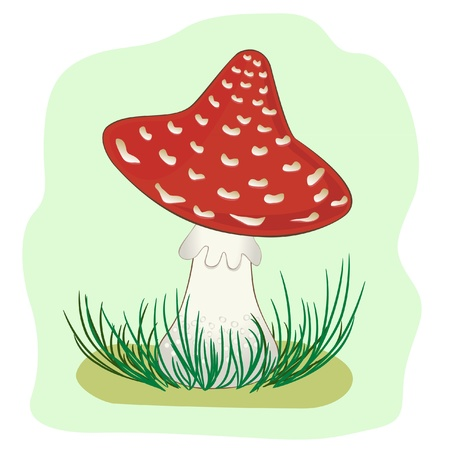 toxic mushroom: Illustration of Mushroom amanita Illustration