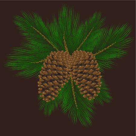 pine needles: Vector illustration of pine cones with pine needles