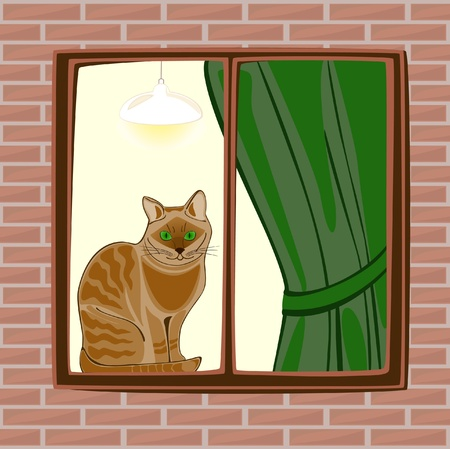 cartoon window: The Cat