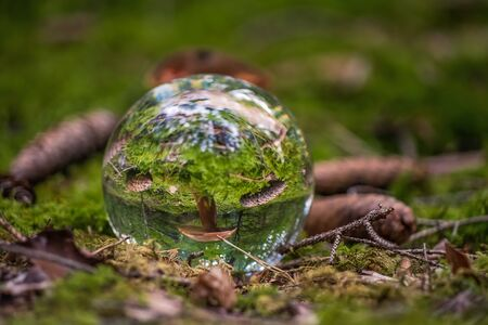 Watching a part of a bavarian forest through a lensball.