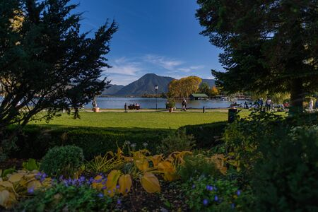 The view over flowers at a lake with mountains. Stock Photo