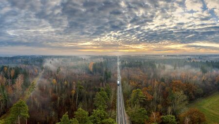 Road through the foggy forest. Car Riding On Highway Between Trees In Nature. Traveling On Vehicle Through Woodland