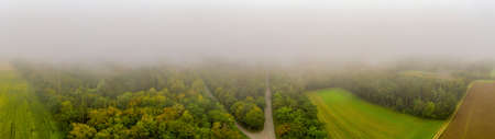 Panoramic aerial view over a foggy wood land with an asphalt street leading through the woodlands. Shot from drone. 写真素材