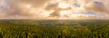Wonderful light over a autumn panoramic forest, shot by a drone in octobre.